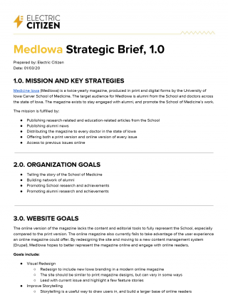sample of strategic brief prepared for client